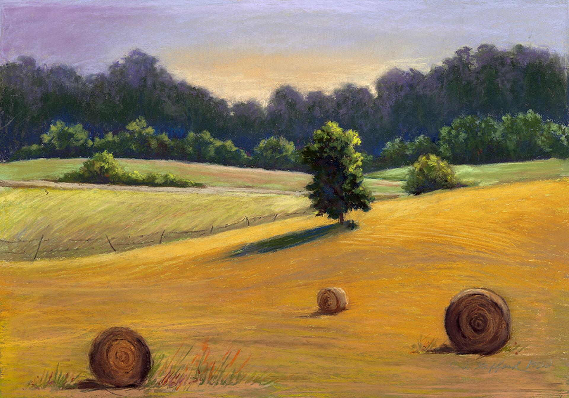 Mary Ann Stafford   Farm Land   Pastel