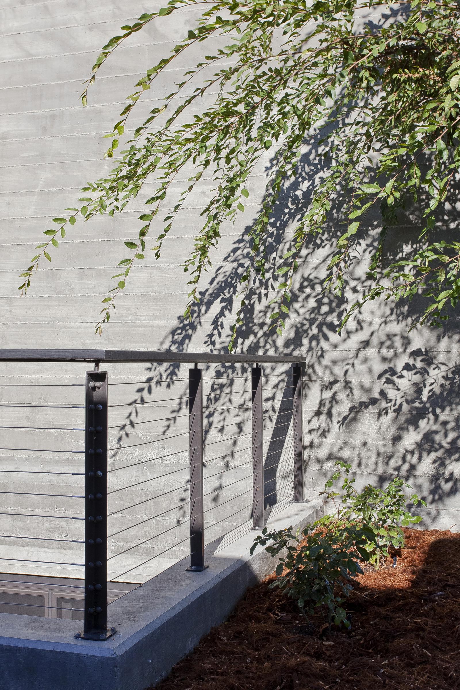 28-471 S. Clark Tree Railing & Concrete.jpg