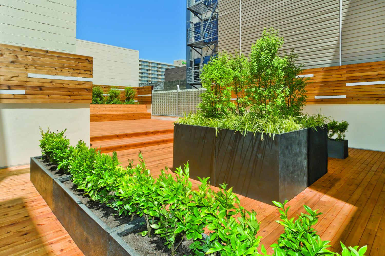 10-garden_cmyk.jpg