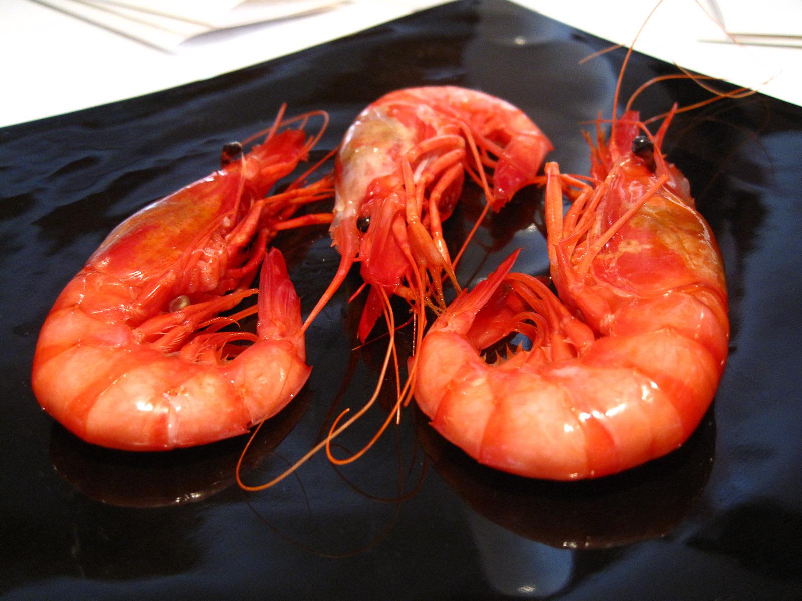 9th Course Denia shrimp