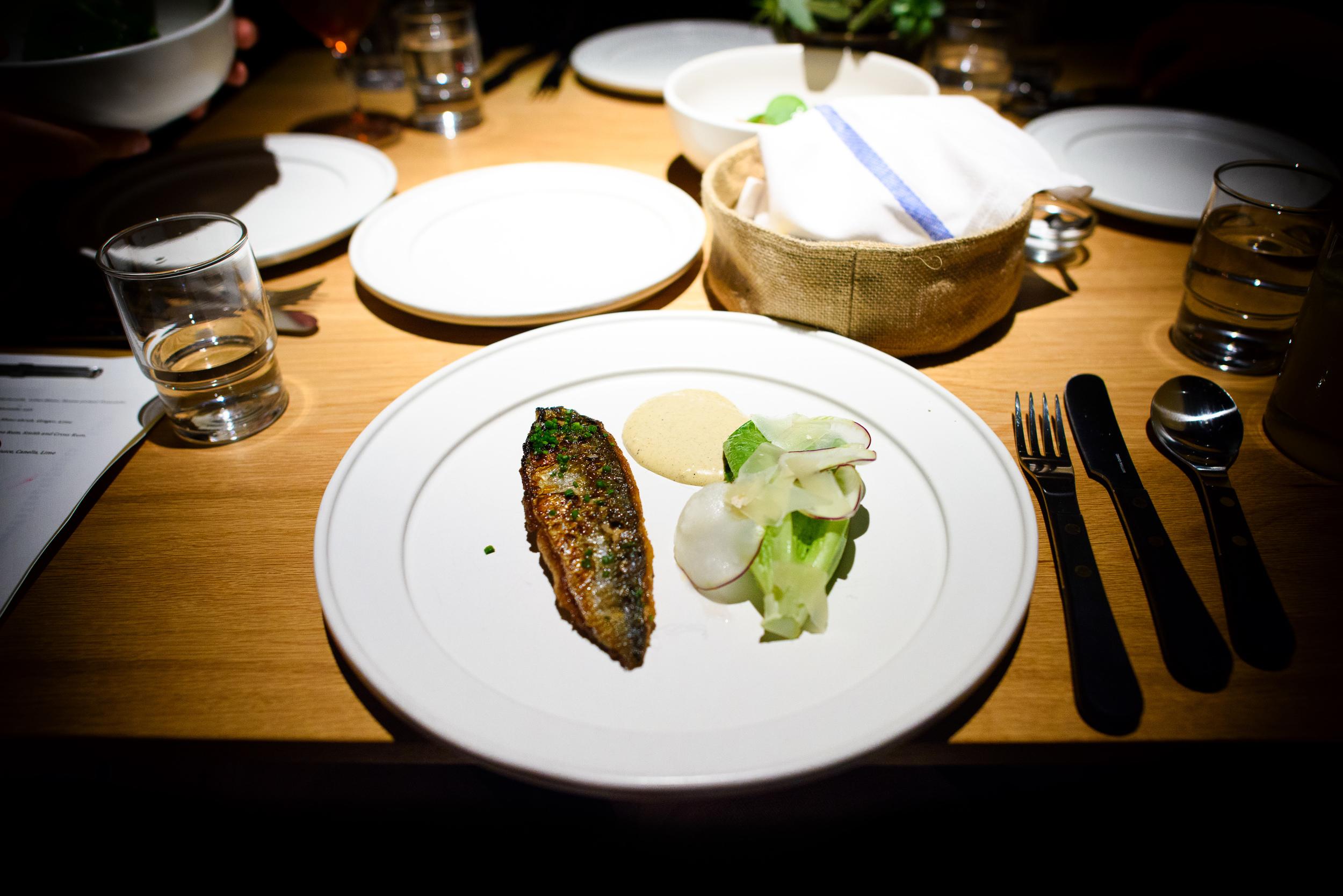 Boston mackerel, kohlrabi, caesar