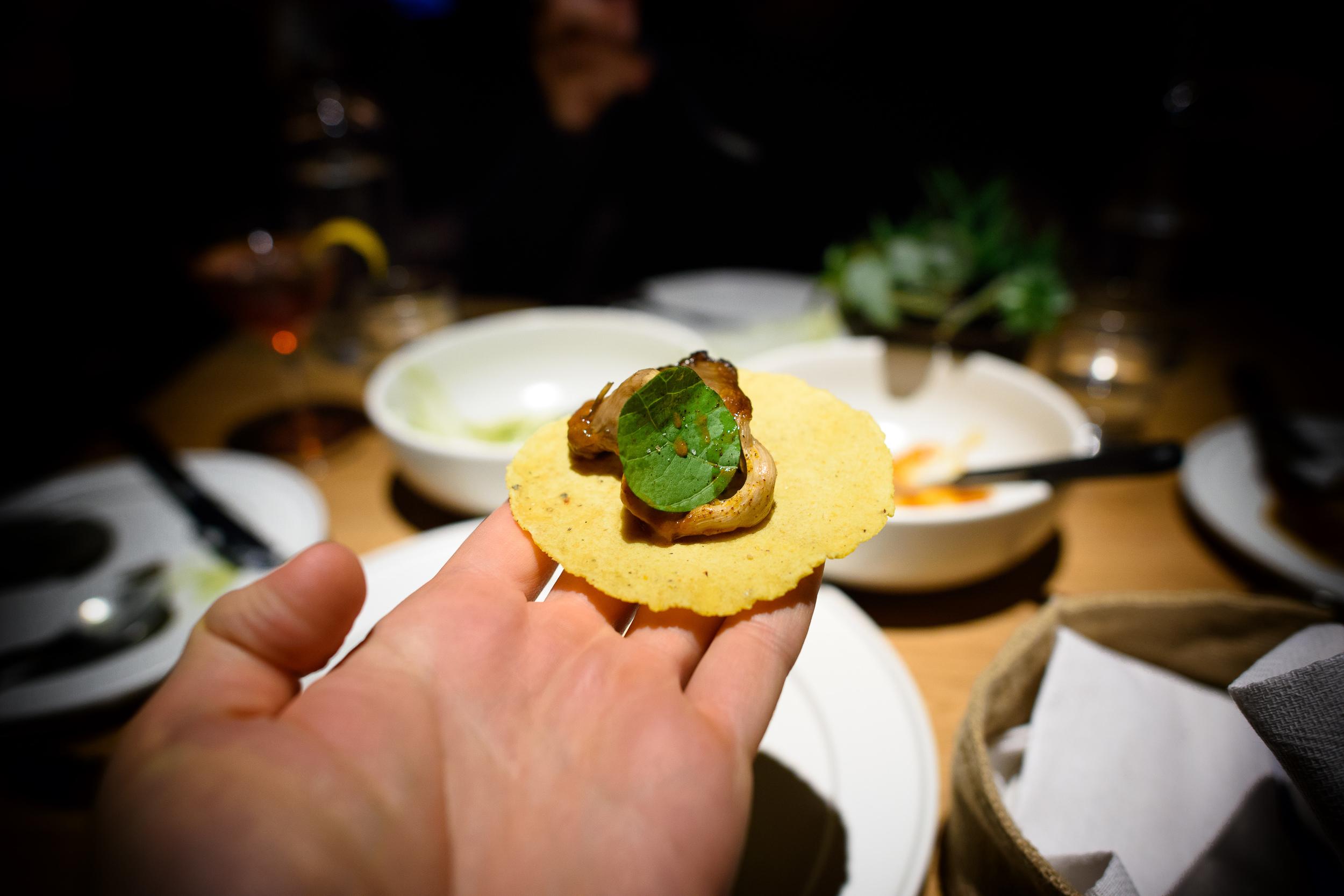 Mushroom barbacoa, chilpachole on a yellow corn tortilla