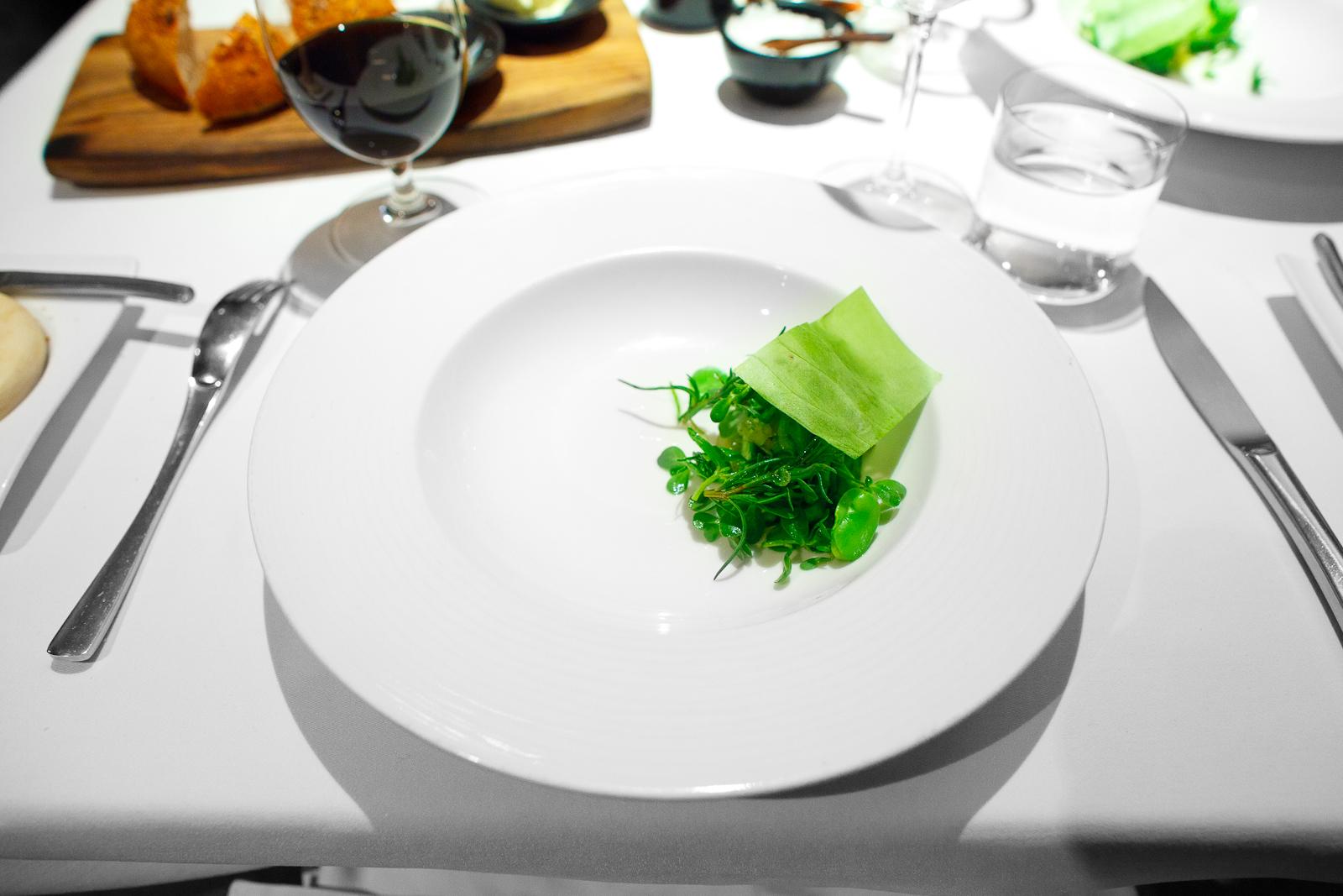 1st Course: Nopal salad, fava beans, sweet pea shoots, dehydrated nopal leaf
