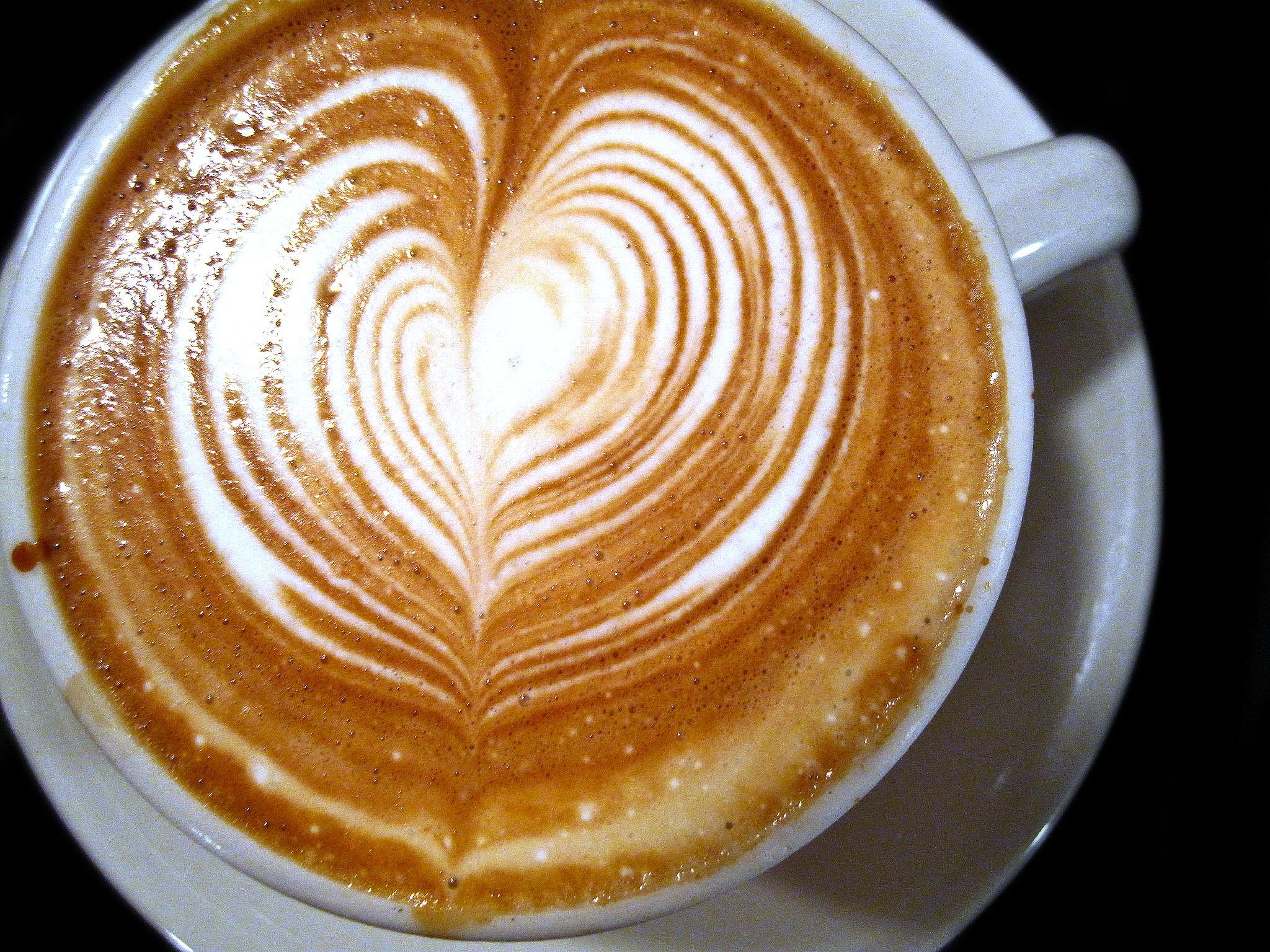 Ninth Street Espresso - Cappuccino