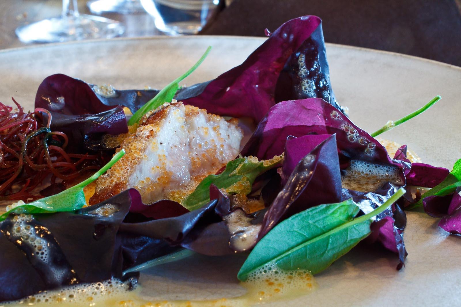 Noma - Sweetbread and bleek roe; Söl and sea salat_