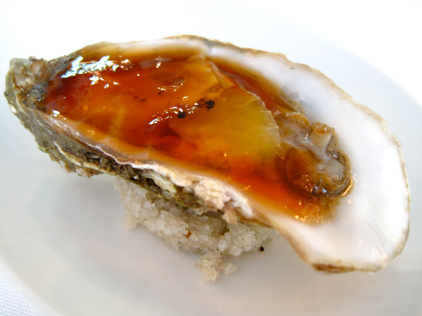 La Bigarrade - Oyster in bBonito gel�e, lime, wild pepper