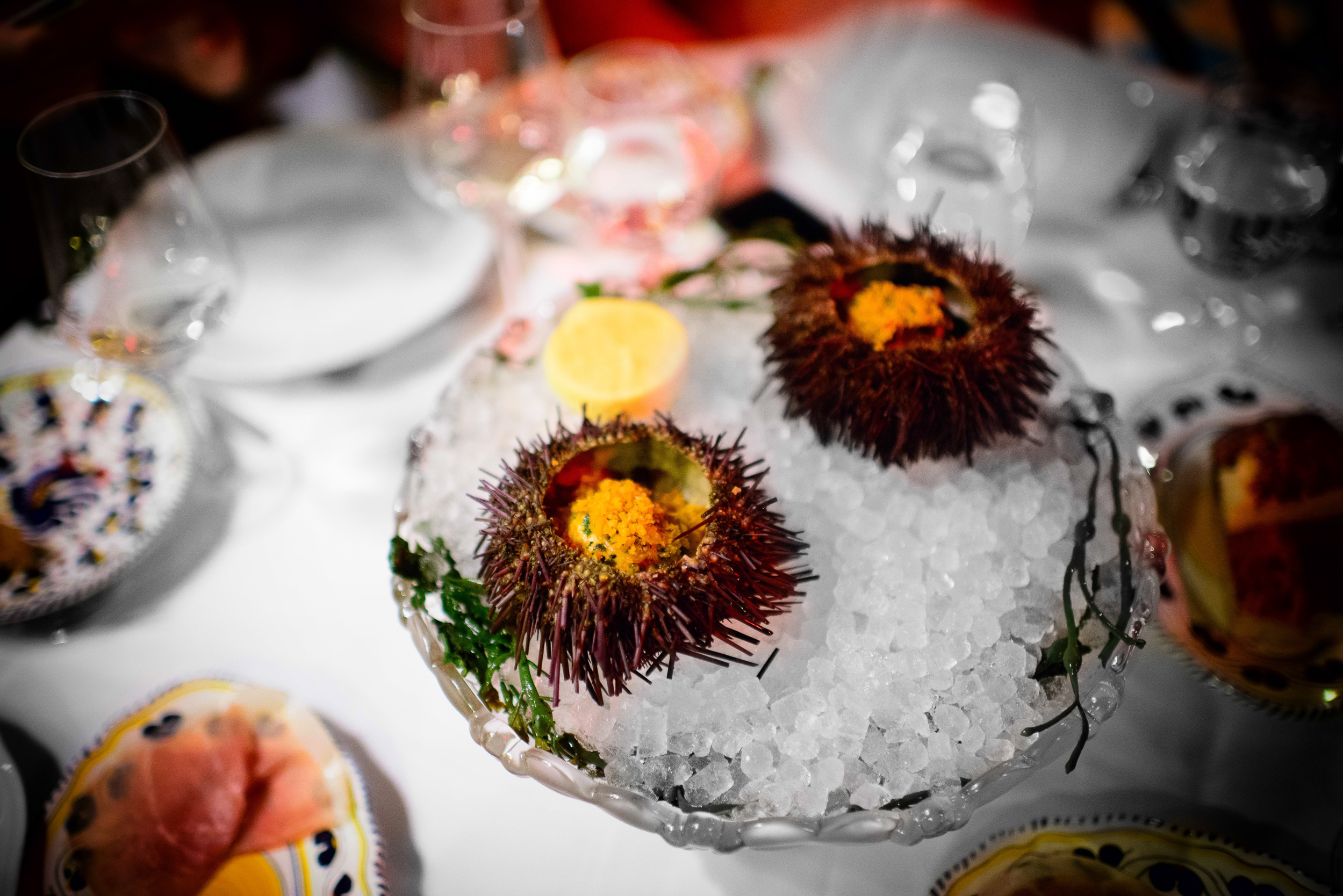 Sea urchin, spicy bread crumbs
