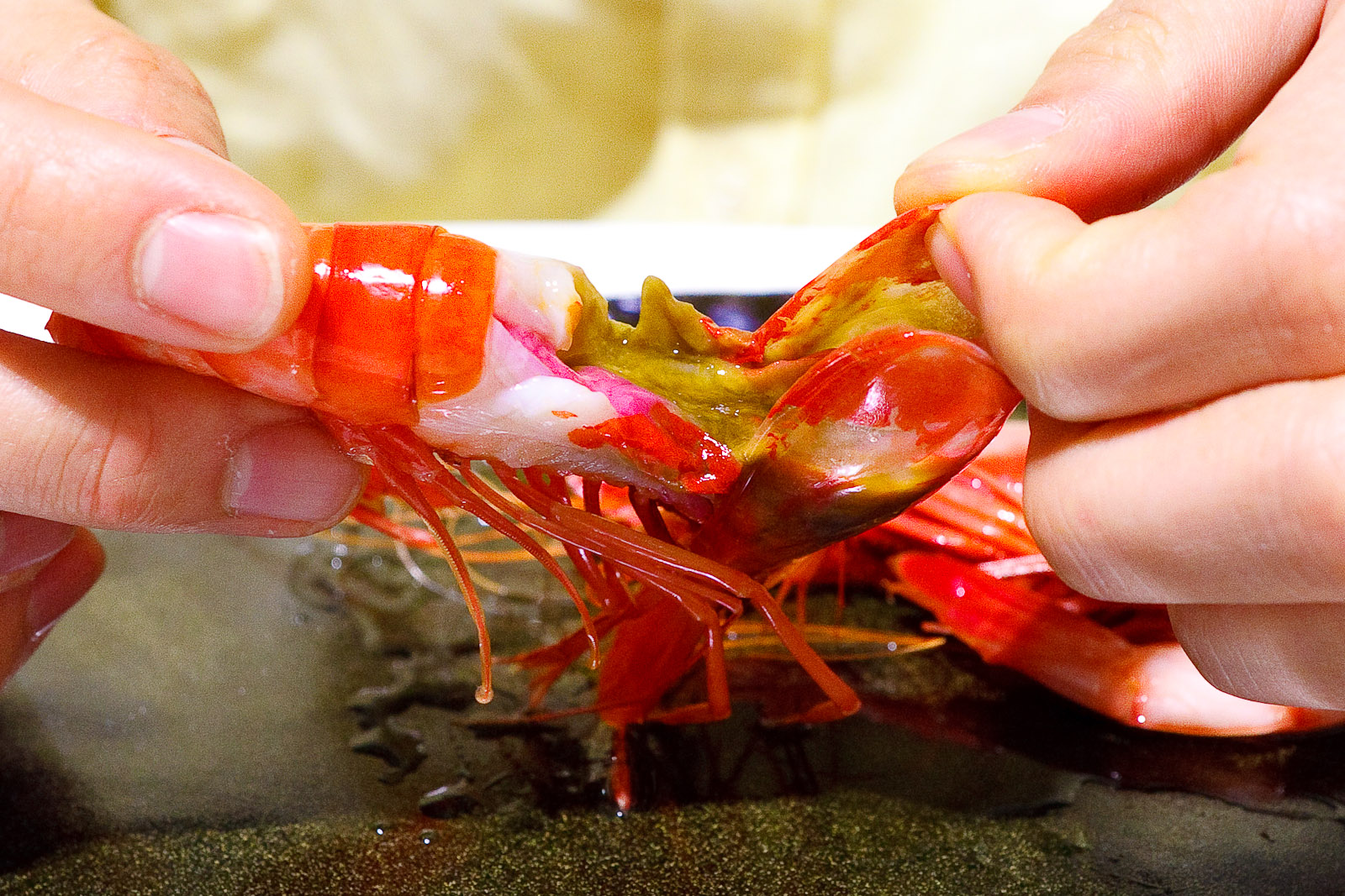 7th Course_ Denia bay prawns, inside colors of red and green.jpg