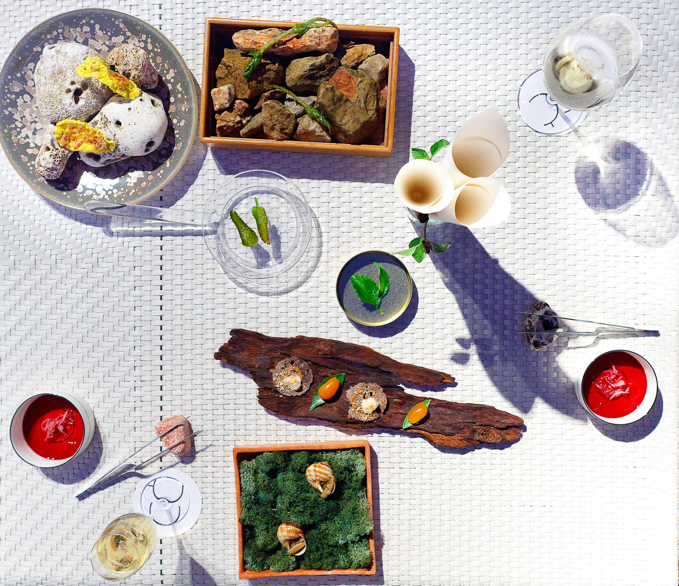 Amuse bouche: Cinnamon basil, Kalanchoe and oil, Cold tea, chicory and hibiscus, Pickled Raïm of pastor, Snail, Shrimp cake with Hazelnut oil, Kumquat with flying fish eggs