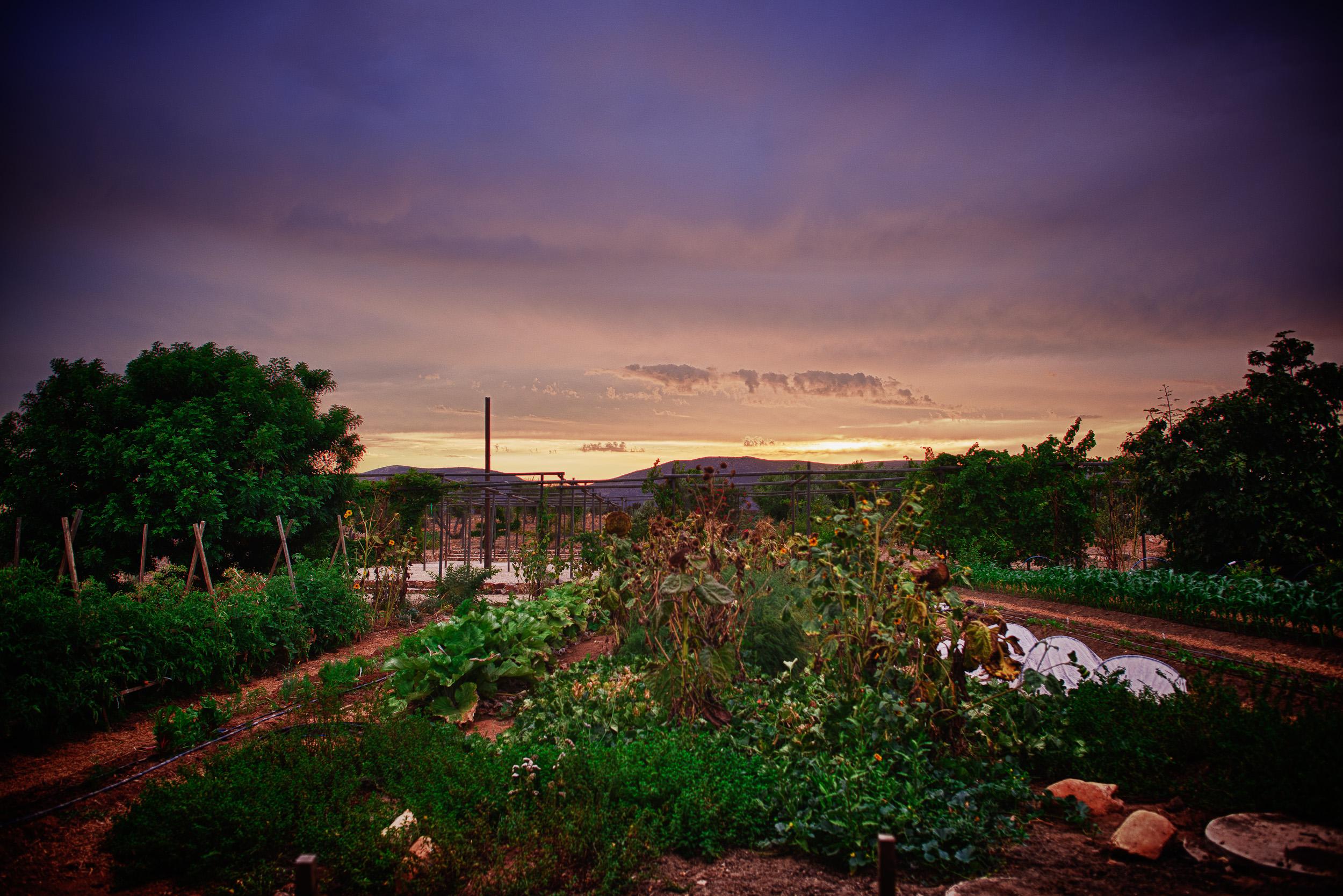 Sunset, Corazón de Tierra, 2012