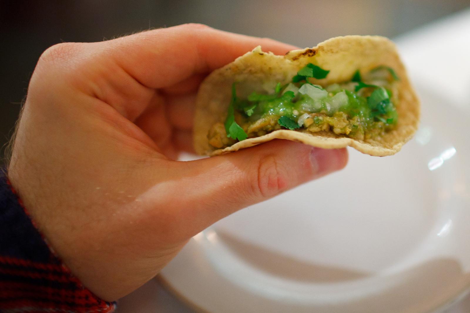 Tacos de chicharrón prensado en salsa verde con calabacitas y tortillas hechas a mano (Pressed pork skin tacos, green salsa, squash, and hand-made tortillas) ($95 MXP), single.jpg