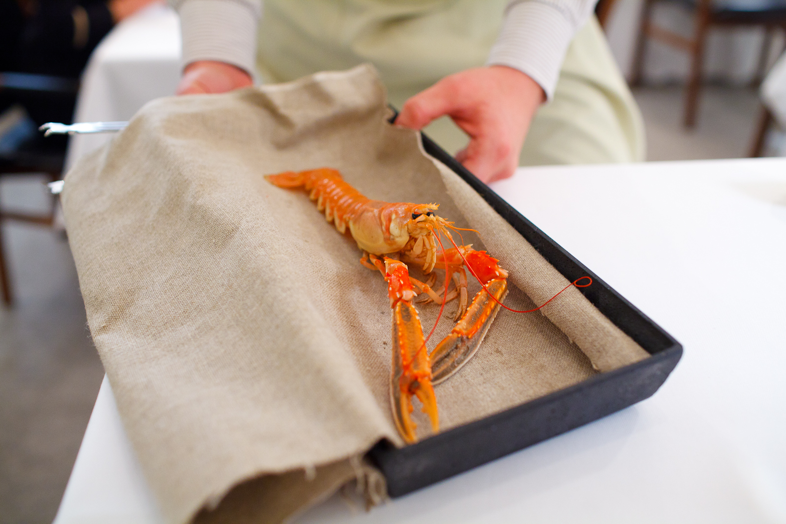 Presentation of a live langoustine for the second amuse bouche. Killed moments before service to maintain the natural shellfish sweetness..jpg