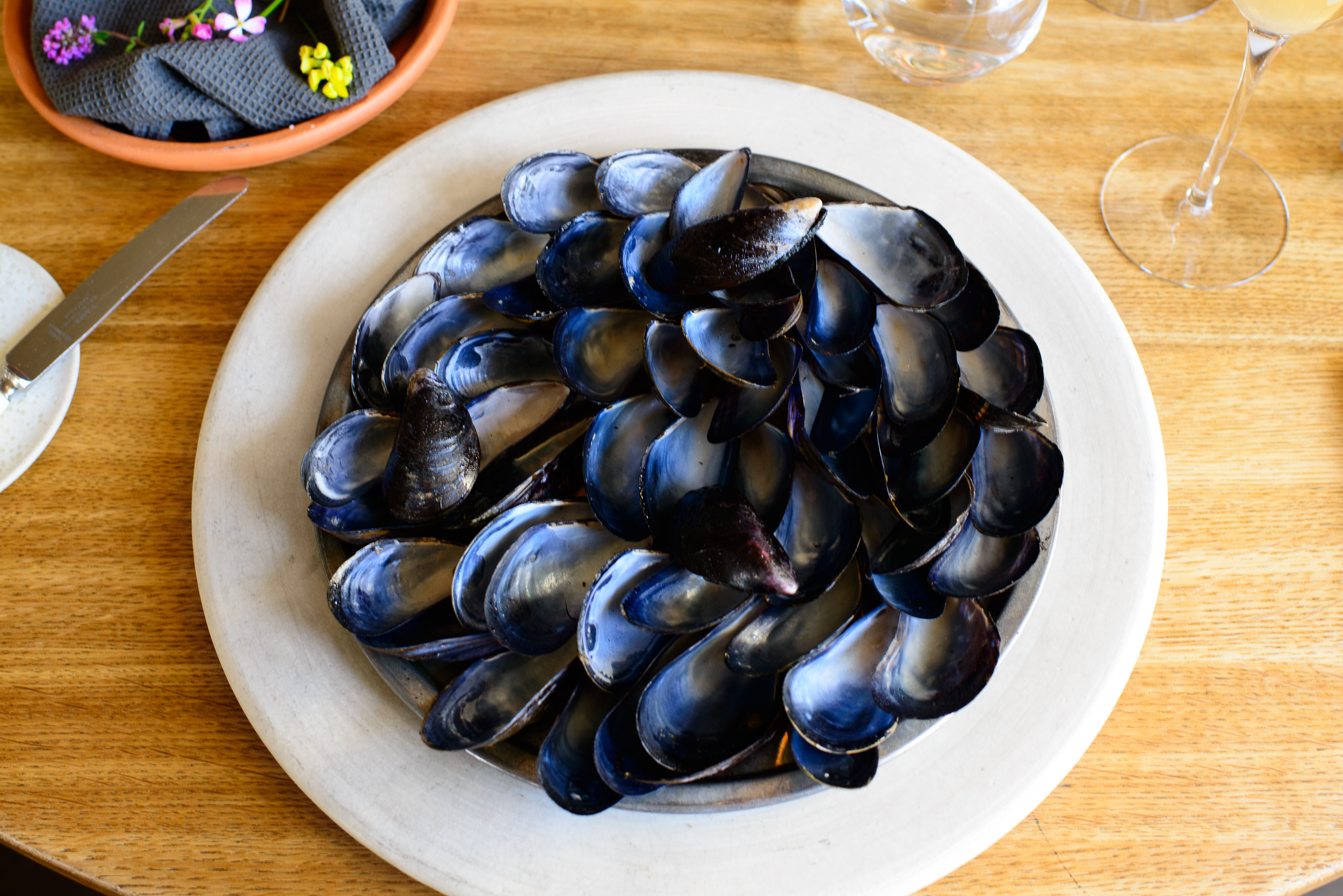 5th Course: Blue mussel and celery