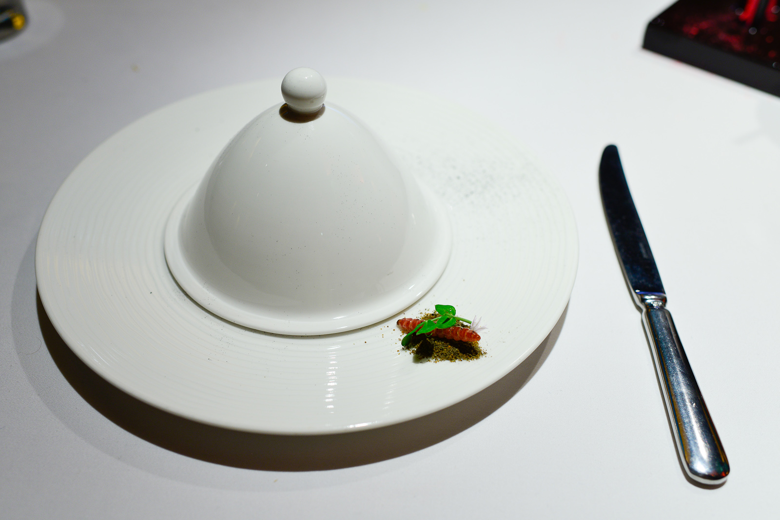 6th Course: Chinicuiles, salsa molcajeteada de chile Mixe, aguac