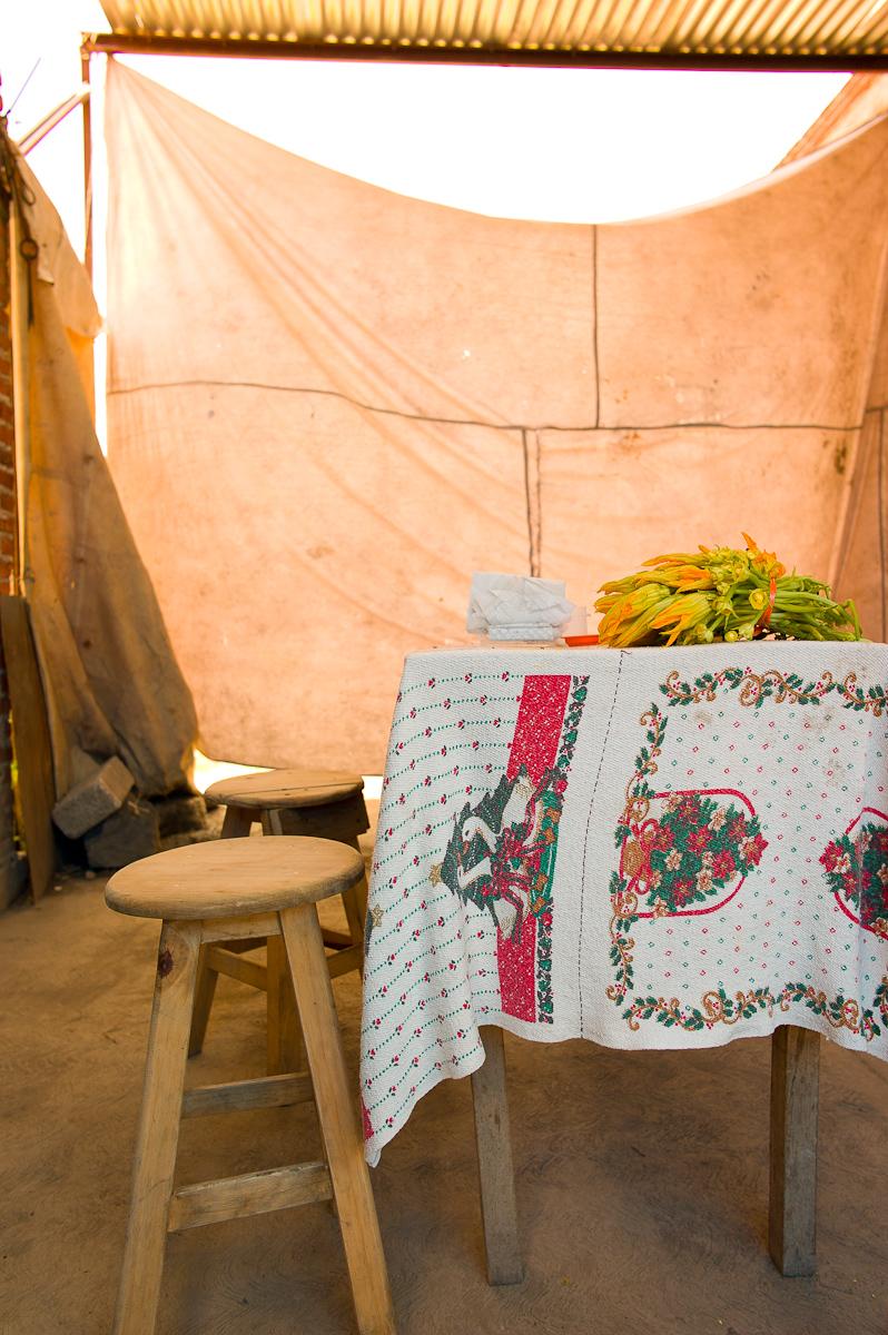 Street Food: Flor de Calabaza (Squash Blossom) Quecas