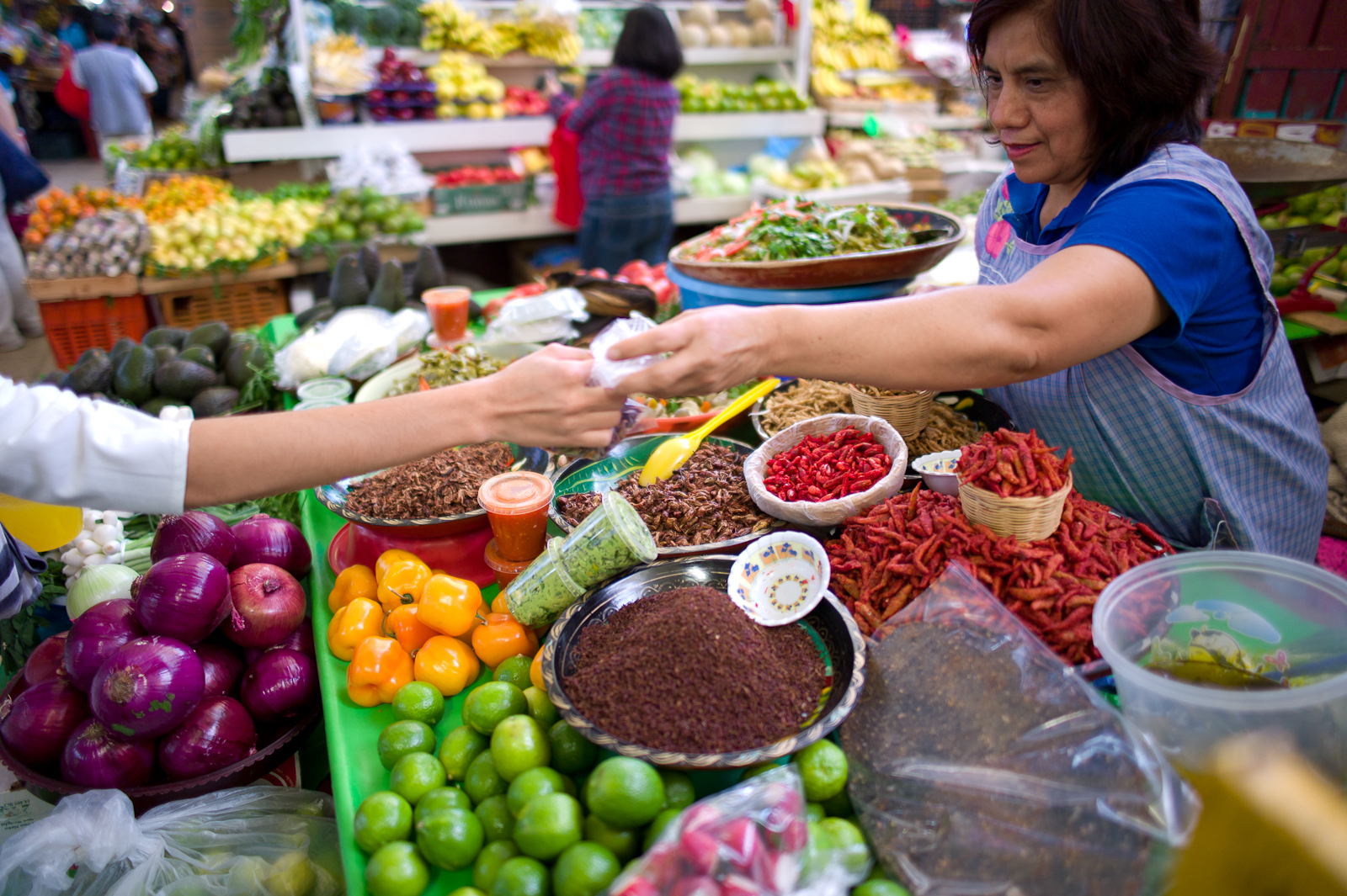 Buying chapulines (grasshoppers)