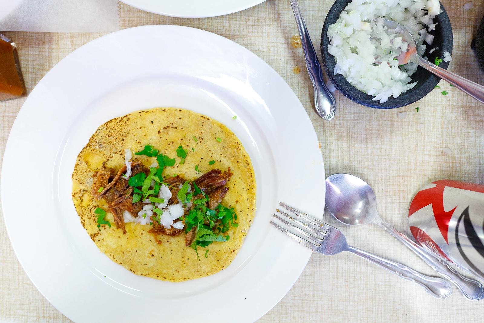 Homemade corn tortilla, birria, cilantro, onion