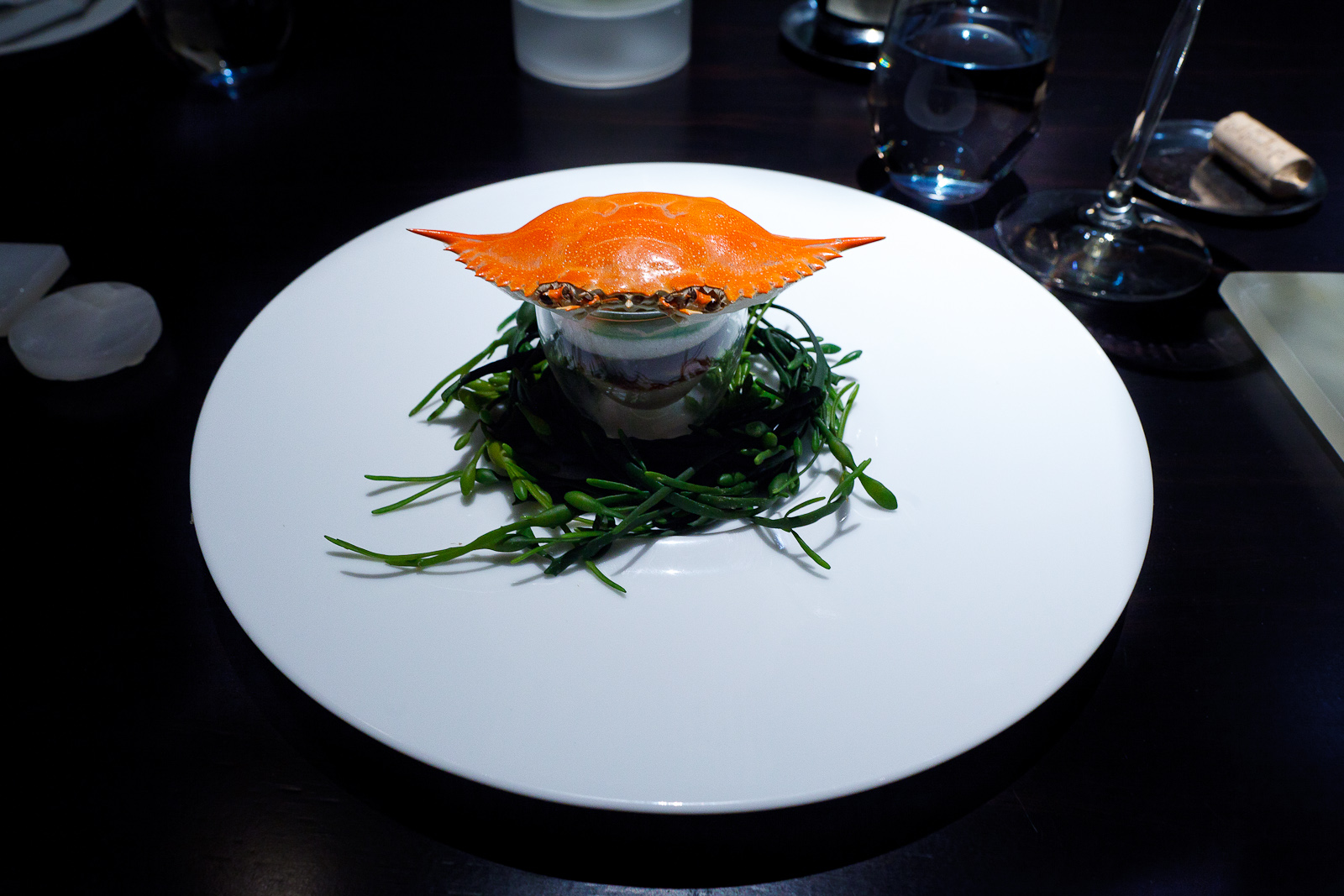 1st Course: Maryland blue crab en gelée, fennel cream, basil, presentation