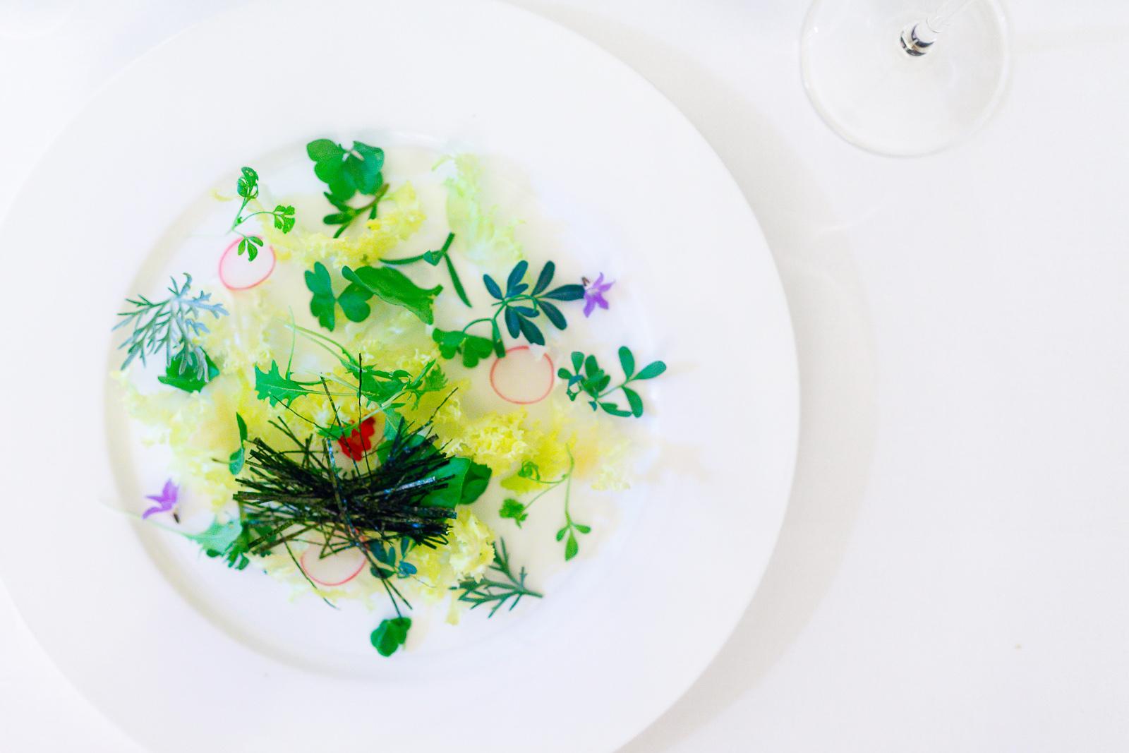 1st Course: Insalata di alghe, erbe aromatiche & radici