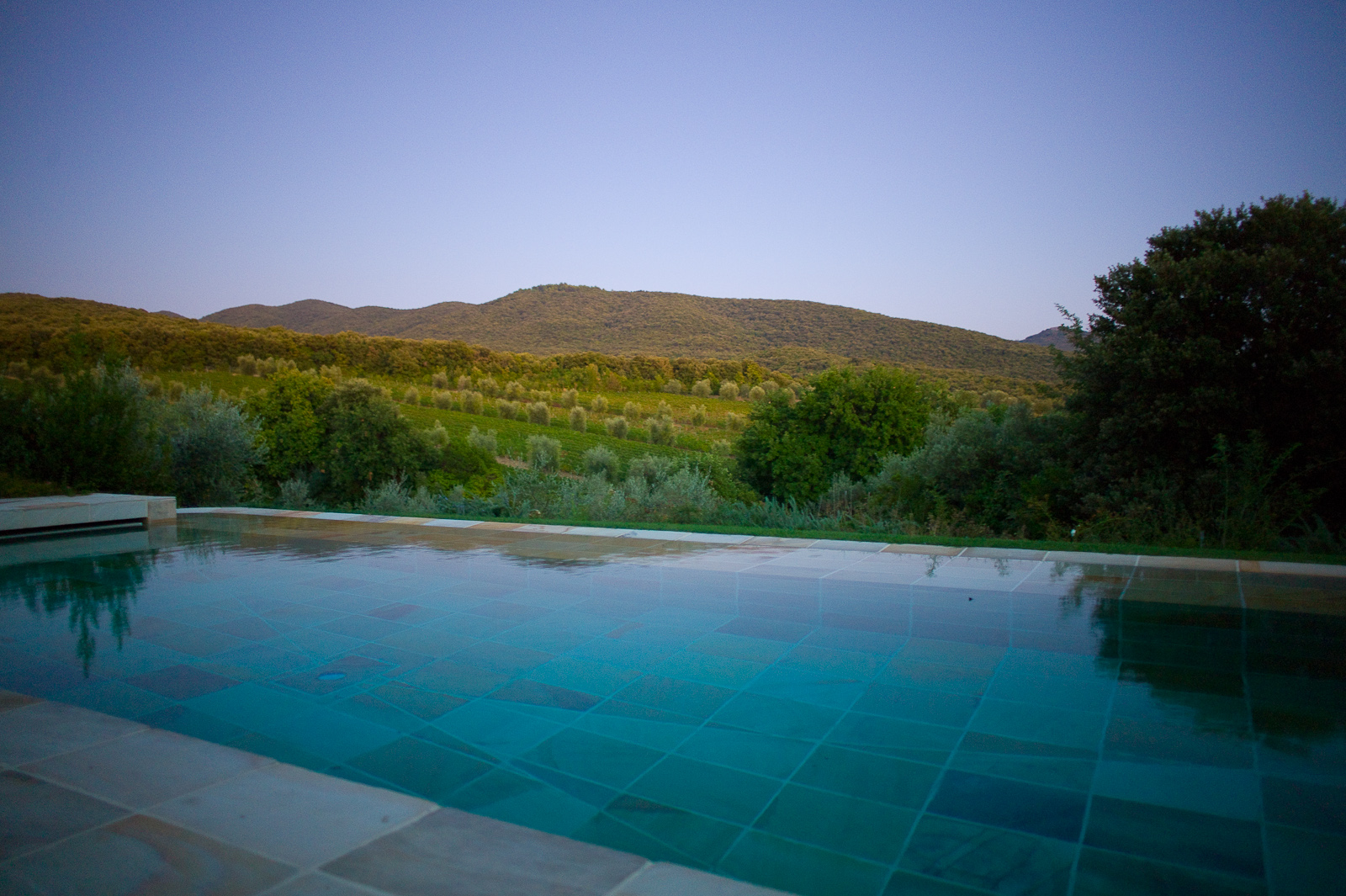 Swimming pool overlooking the vineyard