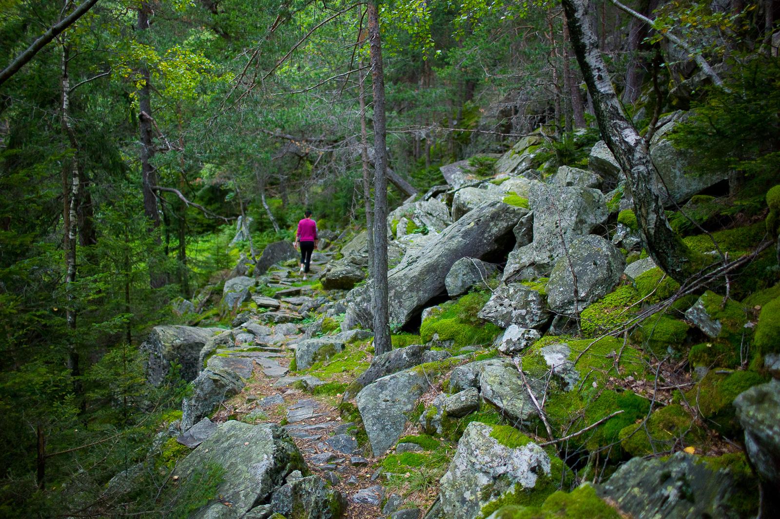 Hike through the hills of San Giacomo Filippo