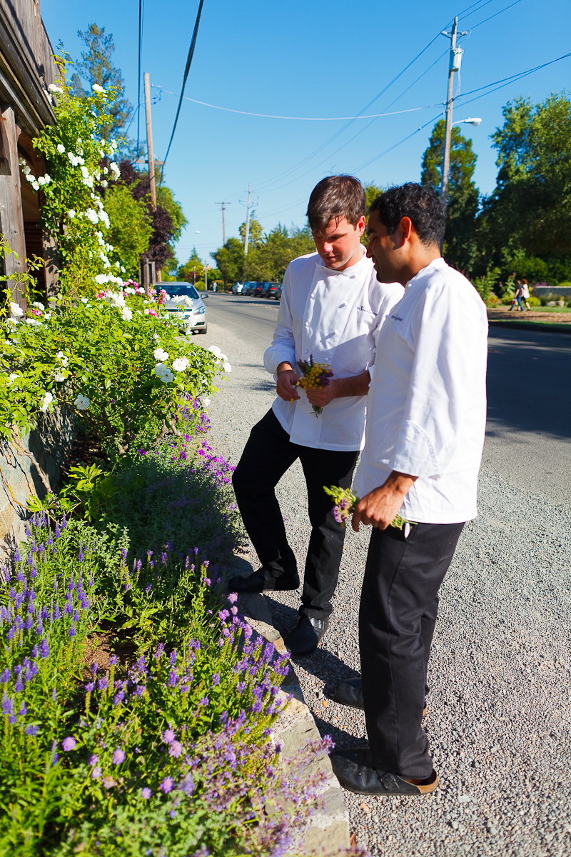 Clipping Flowers from the Roadside Garden