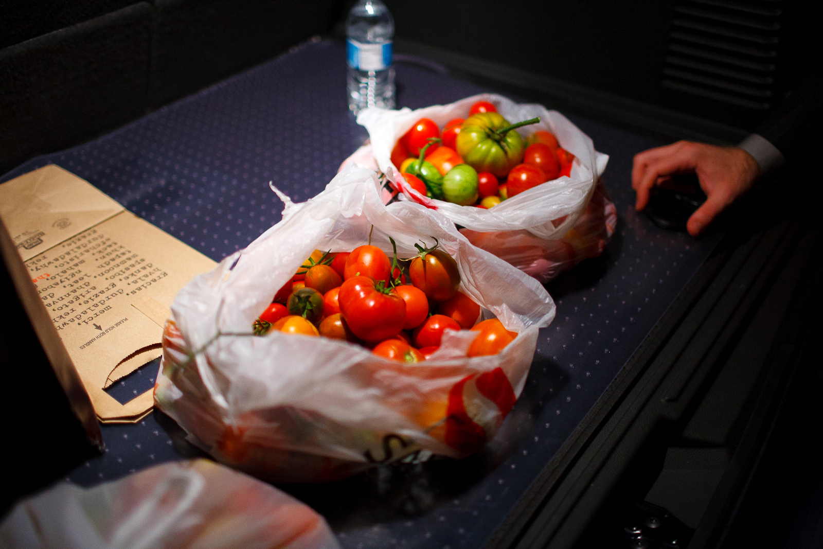 These tomatoes made it from the vine, into my car, and onto my flight back to NYC