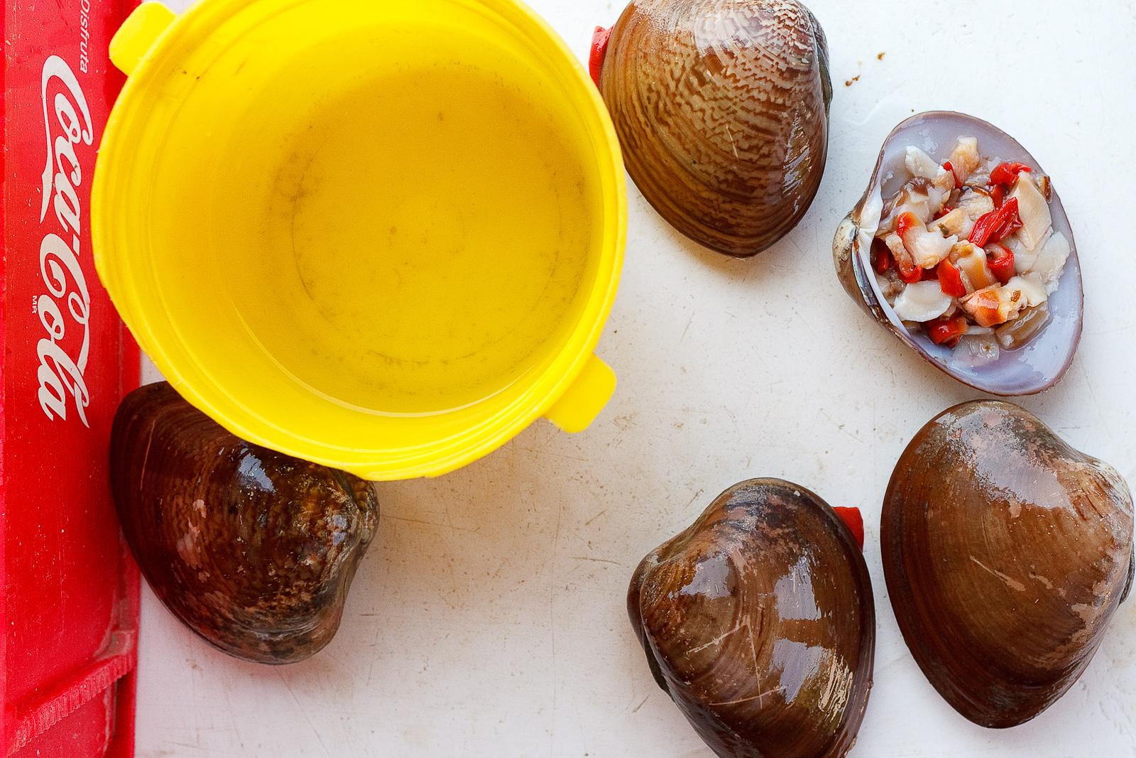 Almejas chocolatas (chocolate clams)