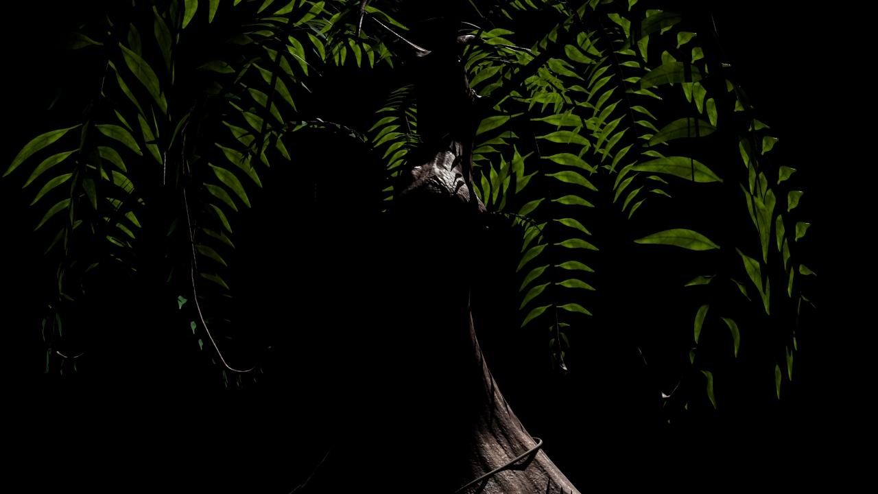 Tree%2520Leaves.jpg