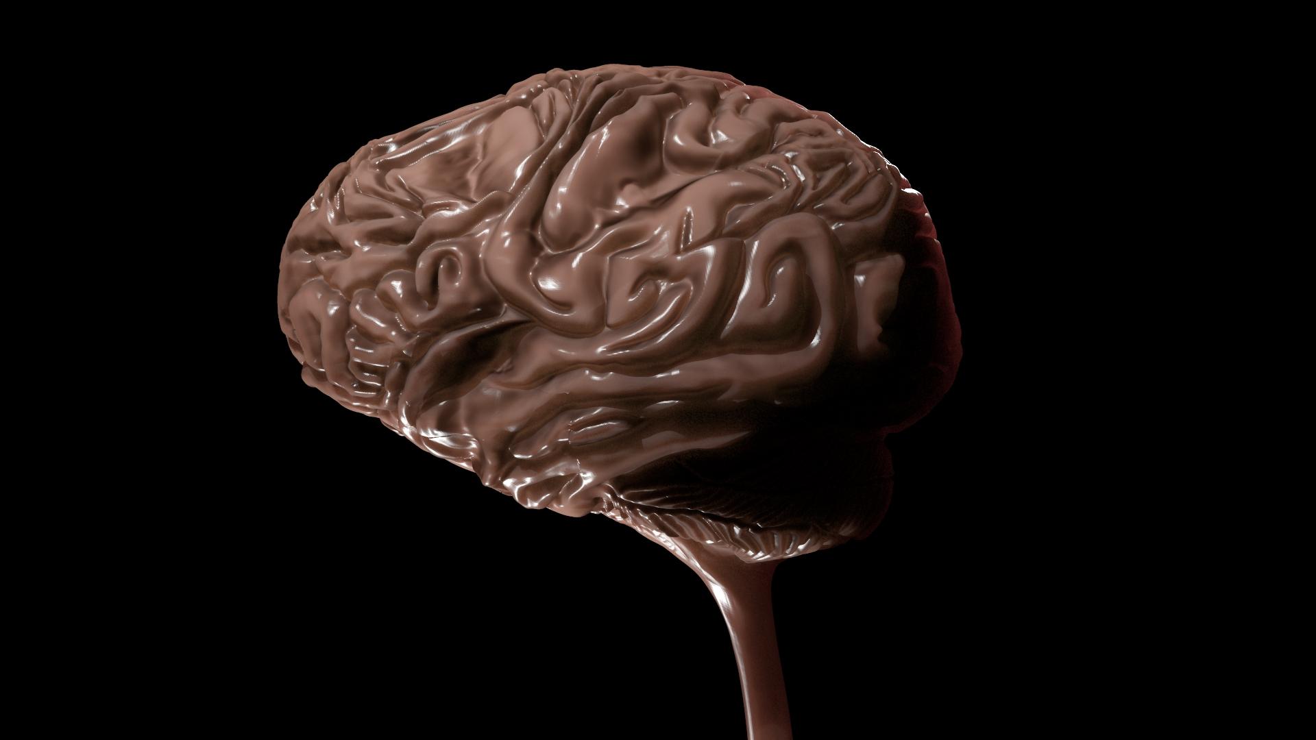 Brain WIP 4.jpeg