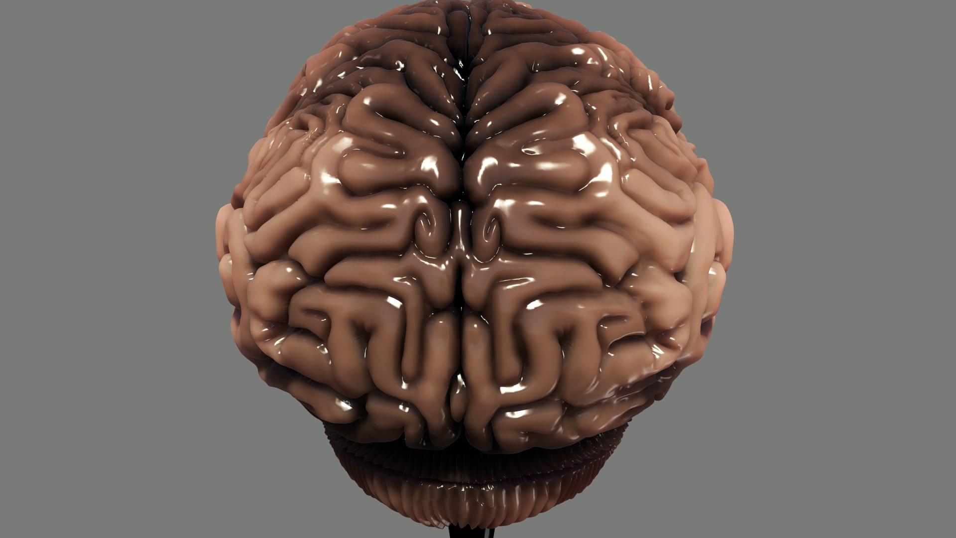 Brain WIP 13.jpeg