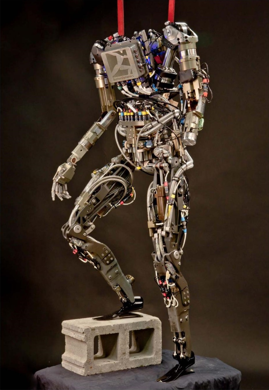 PETMAN-Boston-Dynamics.jpg