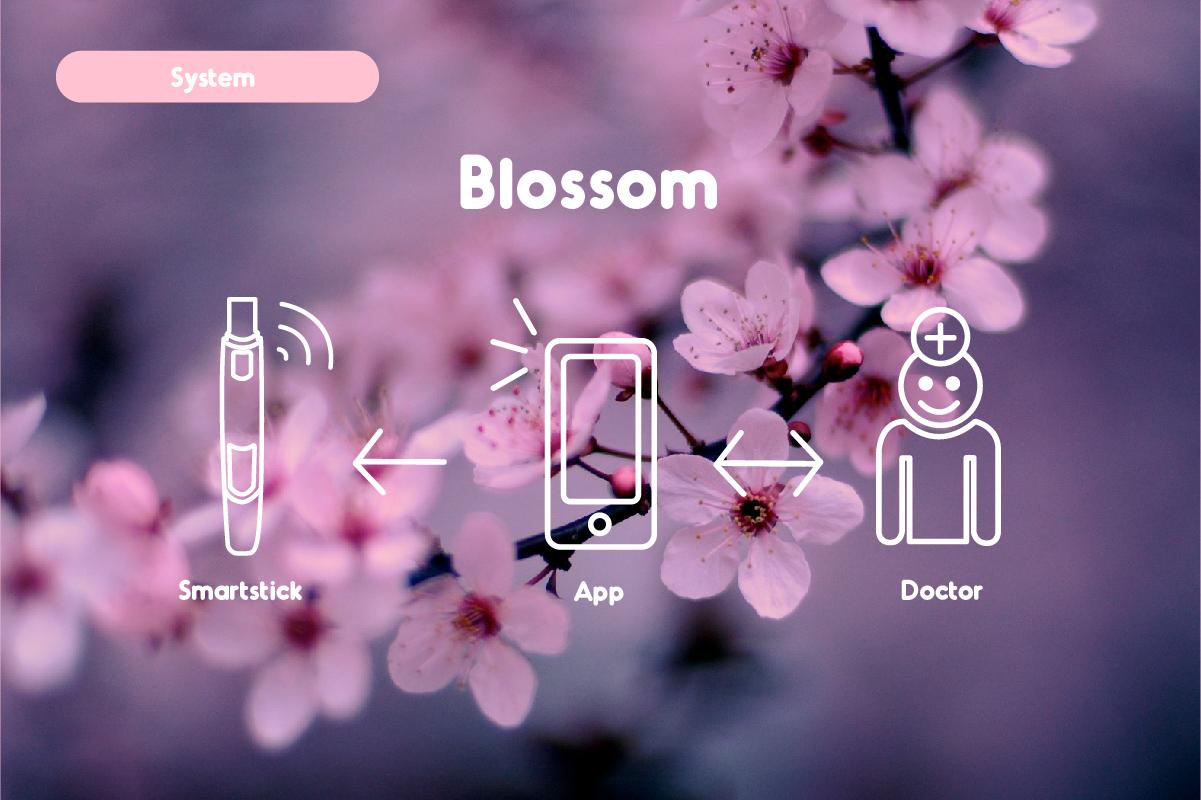 Blosson_image1-03.jpg
