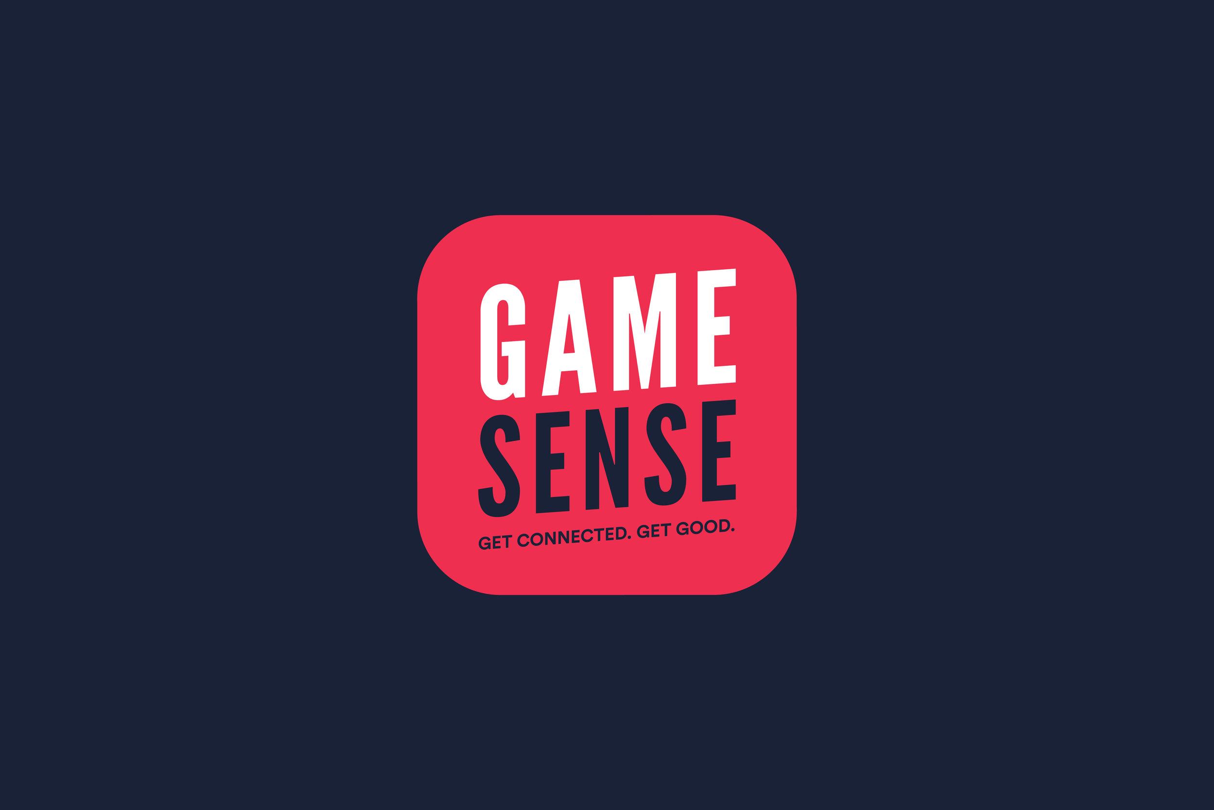 Schoolcraft_GameSense_1.jpg