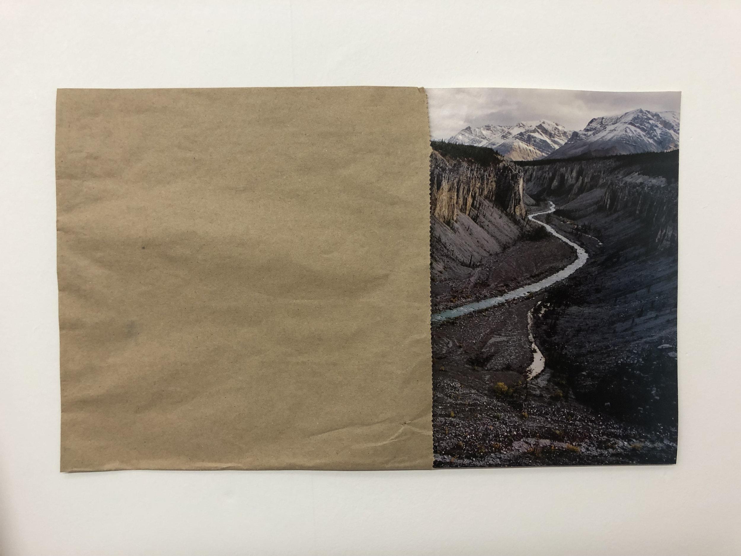 Landscape 2019 Print, bag