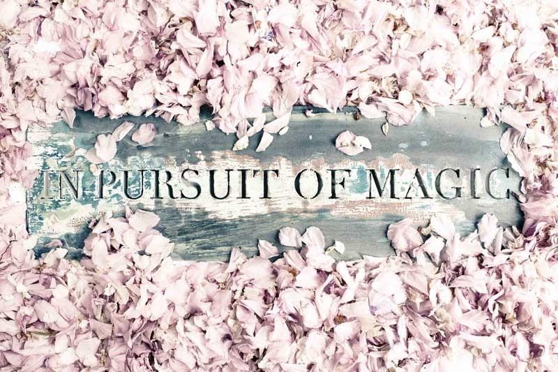 in_pursuit_of_magi.jpg