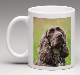Personalise a gift with a pet portrait.