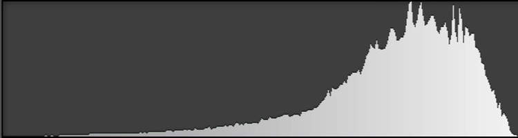 Expose to the right (ETTR): With most of the images pixels in the highlights, the peaks on the graph are on the right.