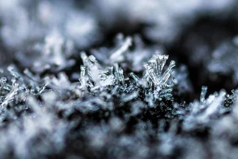 Frost makes amazing structures for close-up photography as well as transforming entire landscapes.