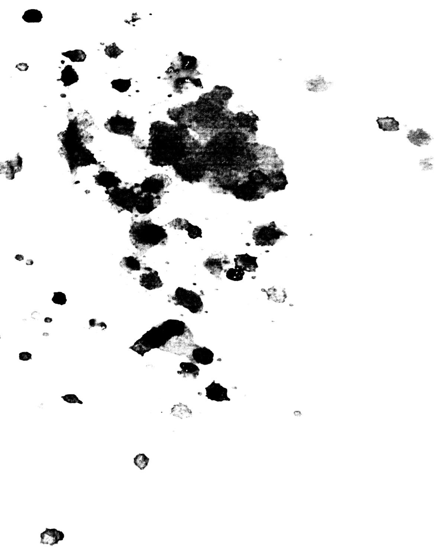 Untitled (markings #1), 2014