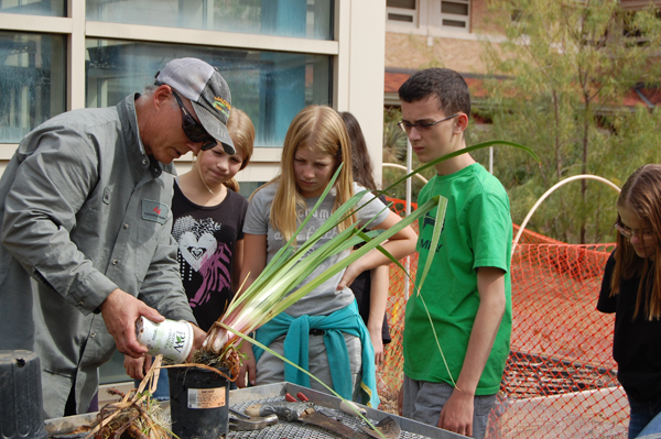 teaching garden.jpg