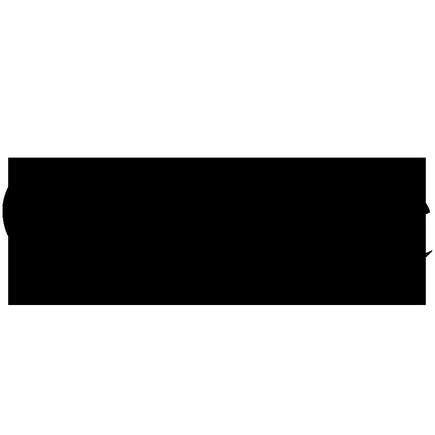 Logo_2013_Google copy.PNG