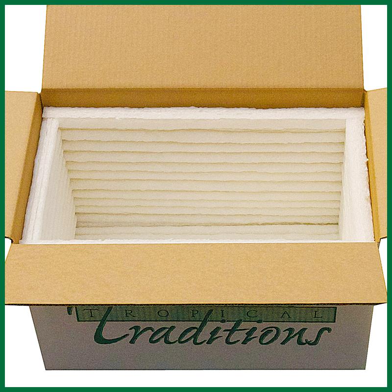 Standard 6-Panel Cooler from Green Cell Foam