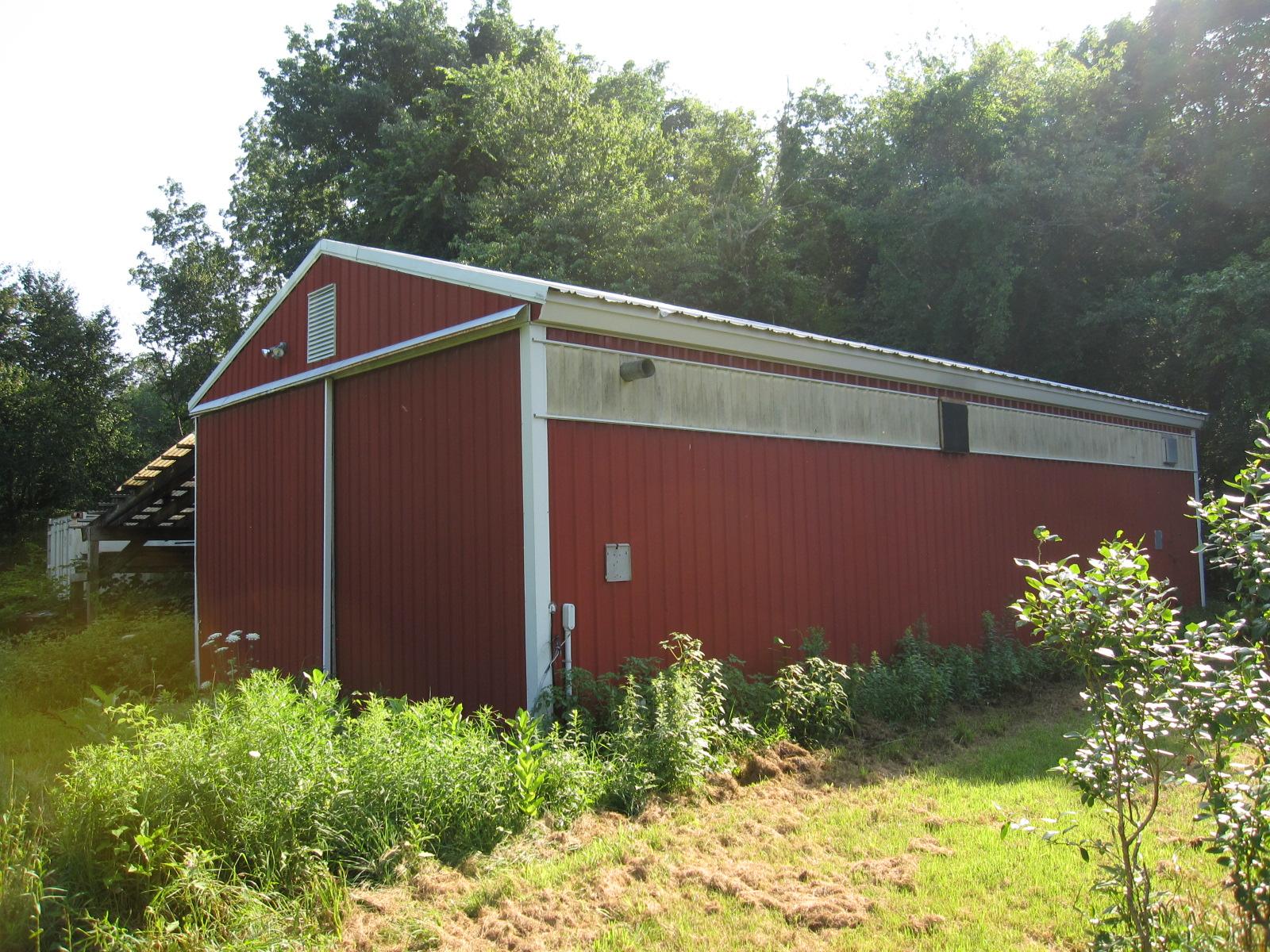 Blueberry Farm 060.jpg