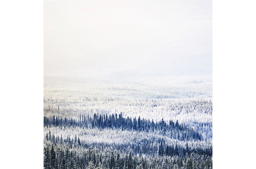 gnc_nicholasdyee_winter.jpg