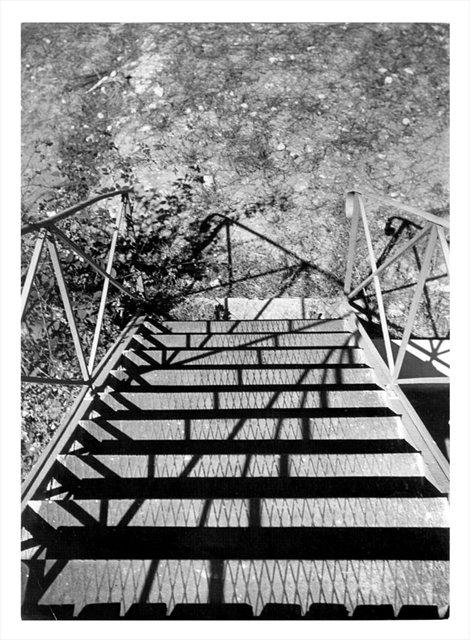 "Ellsworth Kelly, ""Photographic study for La Combe"", 1950"