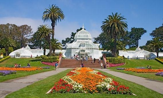 Golden Gate Park - Fulton