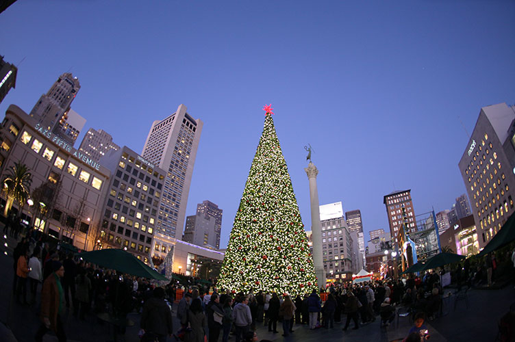 Holiday-Tree (752x500).jpg