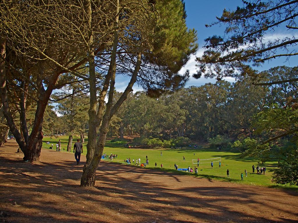 Lindley Meadow.