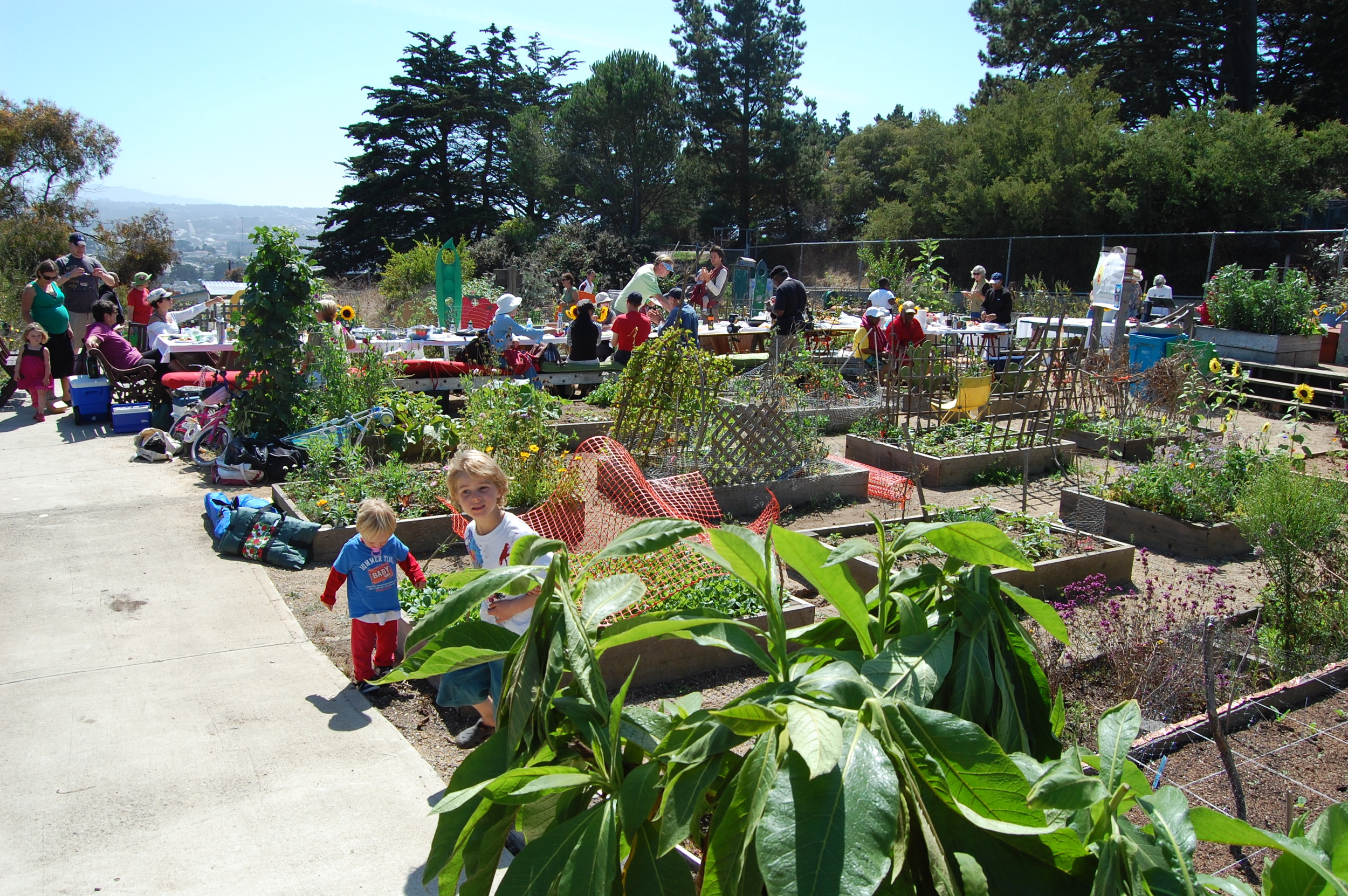 Brooks Park has a community garden and sweeping views of the Pacific Ocean, the Farralones and Mt. Tamalpais.